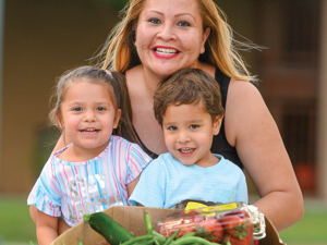 Provide Food Boxes for Families